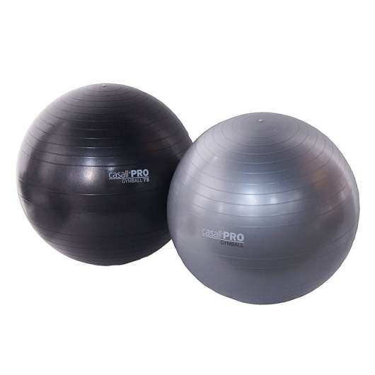 Casall Gymball 2 kg